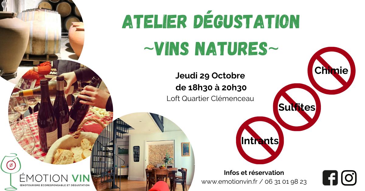 Dégustation vins natures