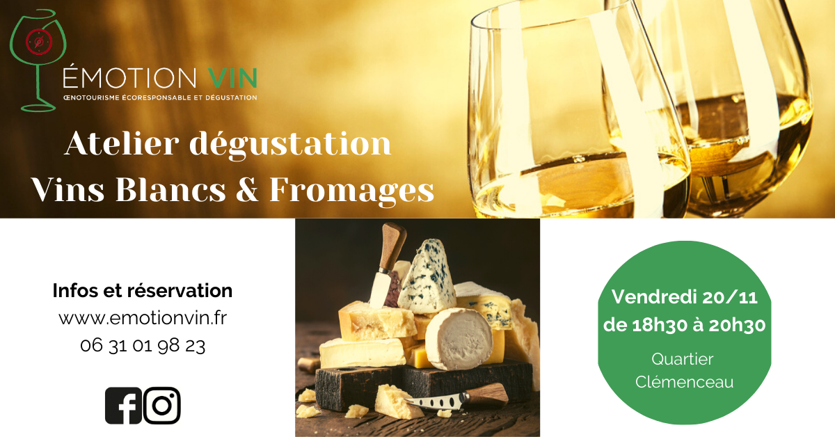Accords vins blancs et fromages